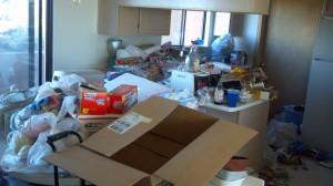 Kirk Hoarding Kitchen- Before